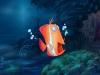 underwater-01_72