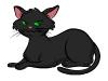 cat_v5_72