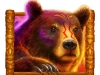 brown-bear-color-h1-v5_2